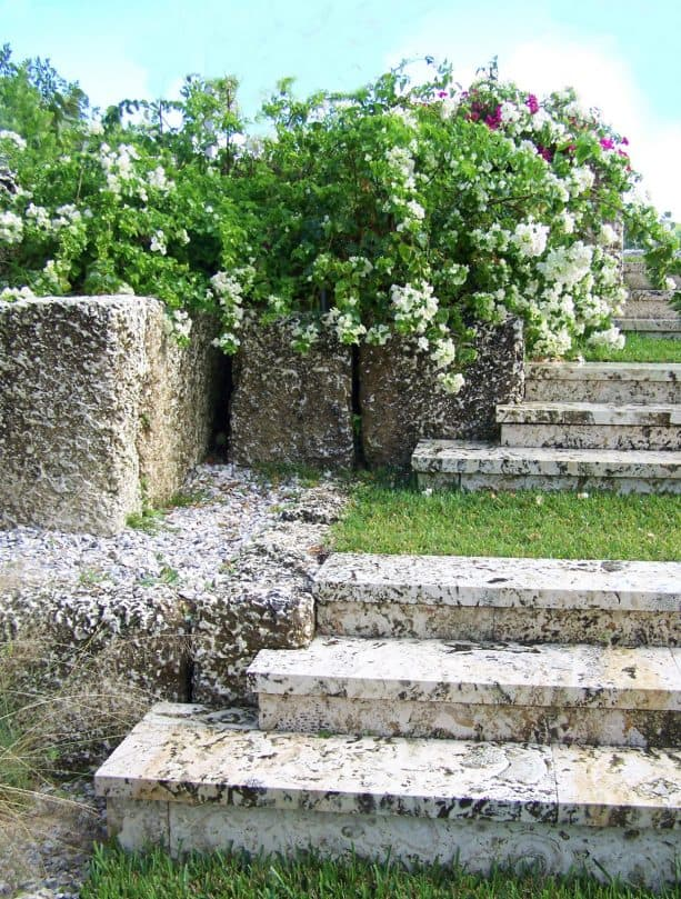 ideas for tropical hillside slope with stone steps landscape