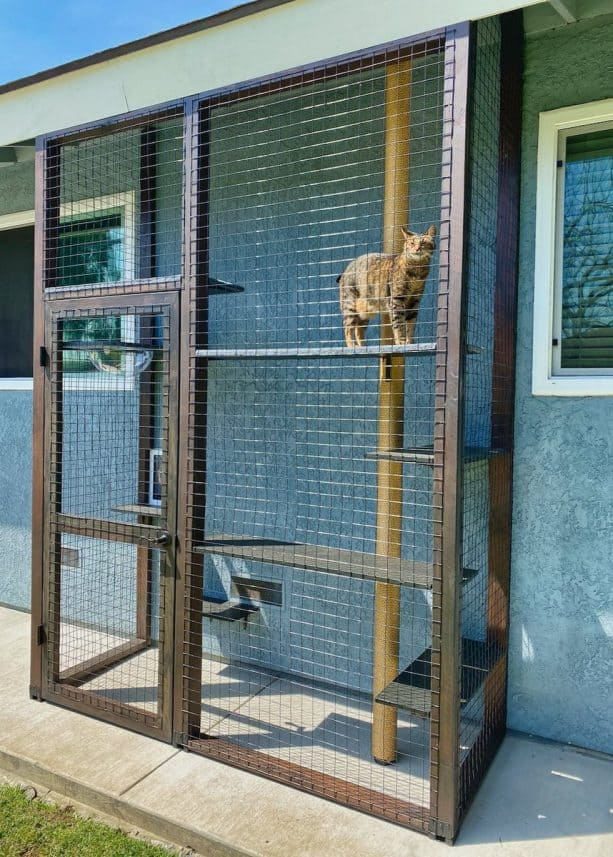 a space-friendly cat enclosure to provide a fun place and enough sunlight for the cat