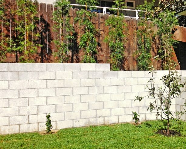 wood privacy fencing paired with cinder block retaining wall