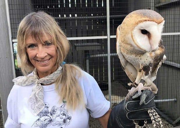A volunteer at Busch Wildlife Sanctuary presents an injured barn owl at a program. (Photo: Bonnie Gross)