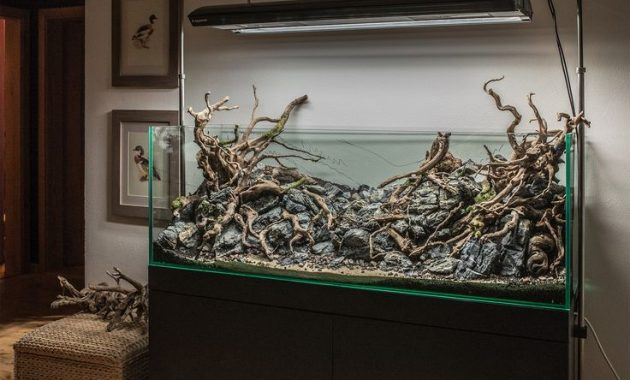 Aquascape Hardscape Designs - Aquascape Ideas