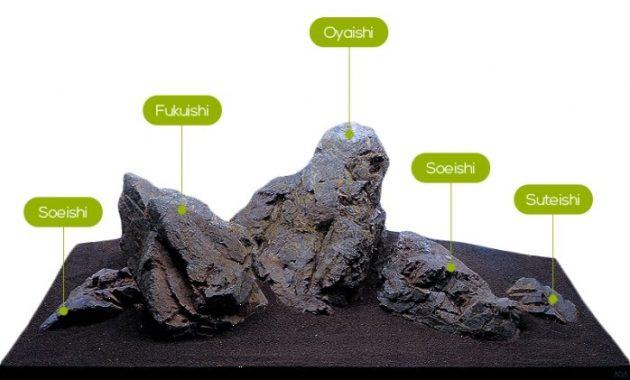 Understanding Rock of Aquascape Iwagumi Style