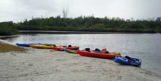 Kayaks lined up at launch for Lido Key Mangrove Trail (Photo: Deb and Ed Higgins.)