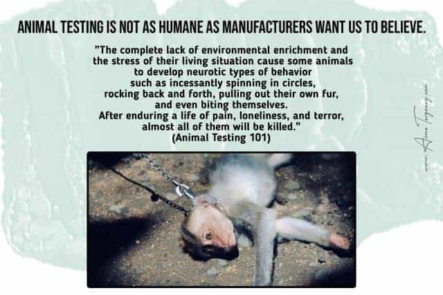Animal Testing Cruelty Facts