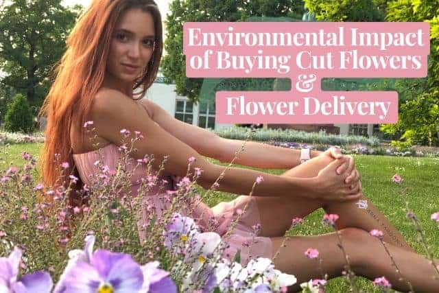 The Environmental Impact of Buying Cut Flowers and the Cut Flower Industry