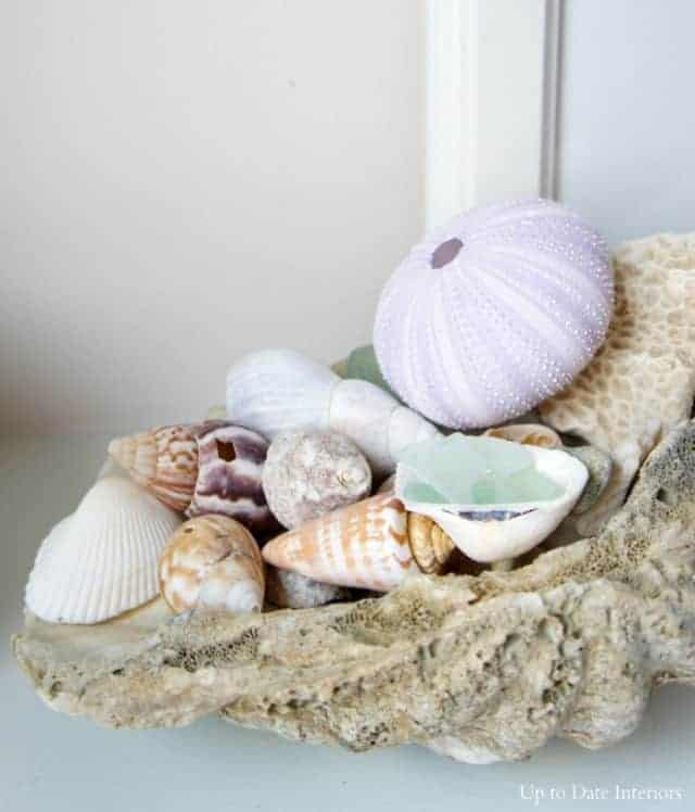 seashell decorating ideas -large shell filled with beach finds