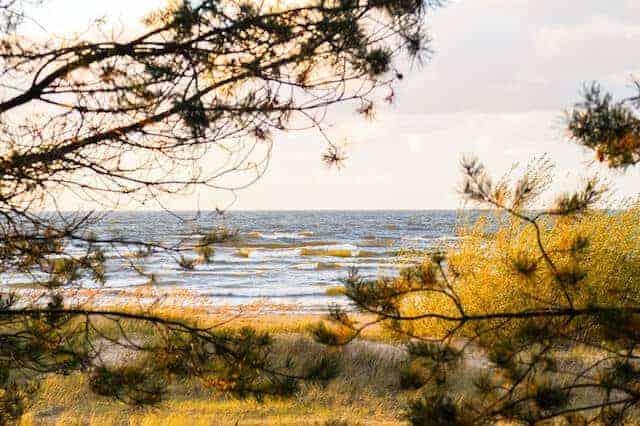 Vecaki beach, Riga