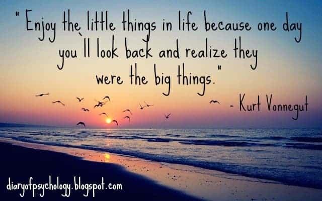 Enjoy the little things - inspirational life quotes