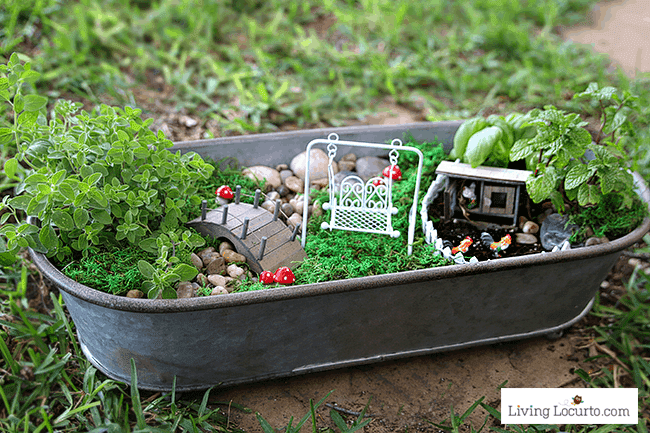 How to make a Herb Fairy Garden. Easy container garden for your kitchen! Easy tutorial for how to make a mini fairy garden for your home.