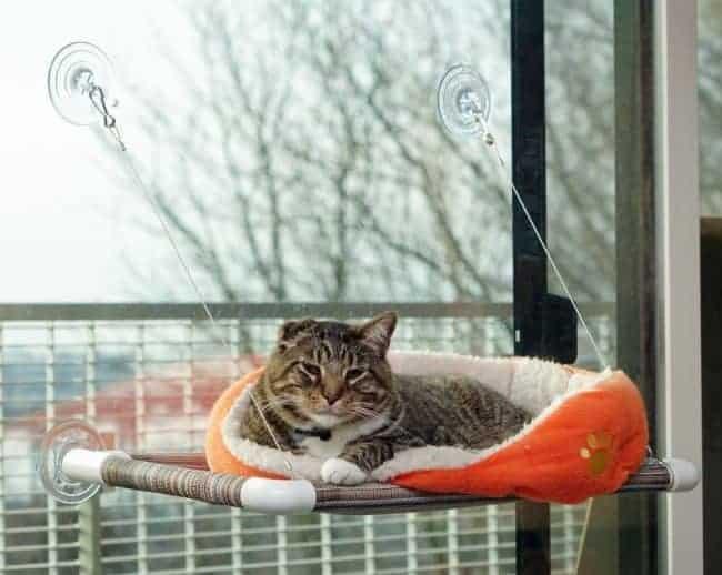cat home decor ideas kitty cot window seat perch