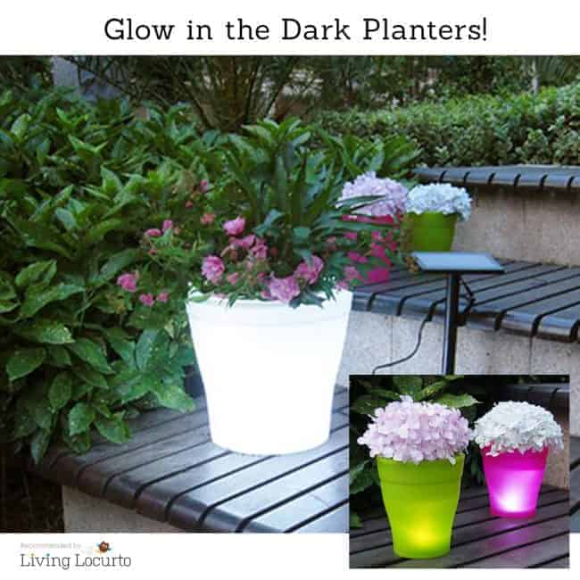 Glow in the dark LED Flower Pots that change colors! Great idea for a garden.