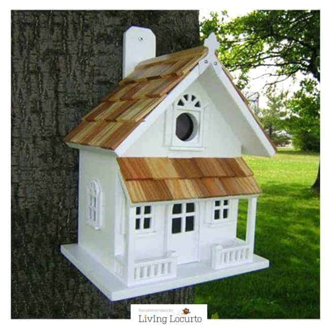 A Beautiful Bird House is another great gift idea for the garden lover.
