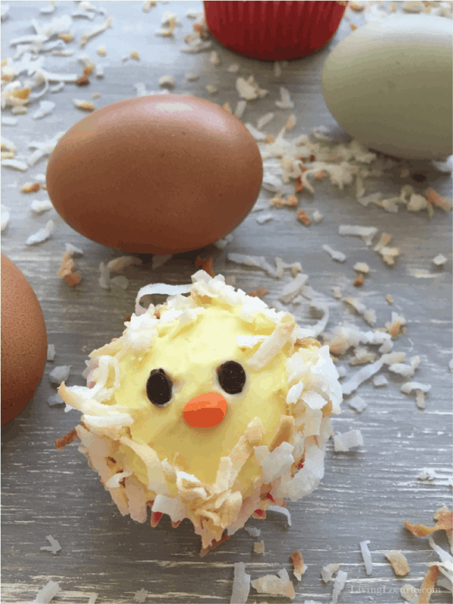 How to Make Baby Chick Cupcakes . Easy birthday cake ideas for chicken lovers. Cute party food.