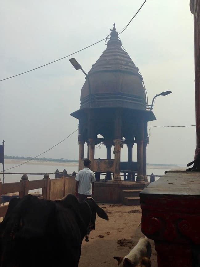 Varanasi, Indiens heilige Stadt: Kuh und Qualm am Manikarnika Ghat