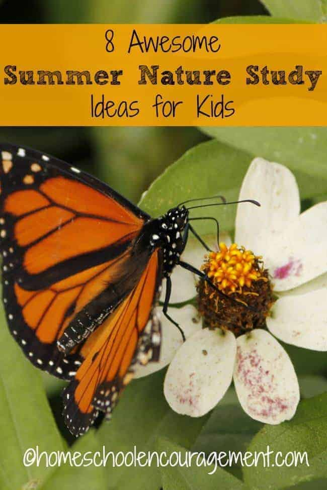 Just because it's summer doesn't mean your kids can't keep learning about God's wonderful creation. Here are 8 awesome summer nature study ideas for kids.