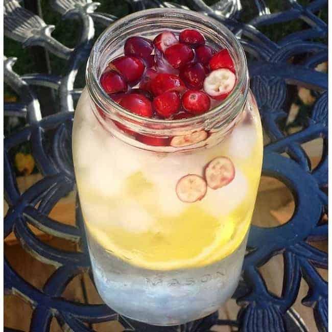 Infused Water mit Cranberry und Zitrone