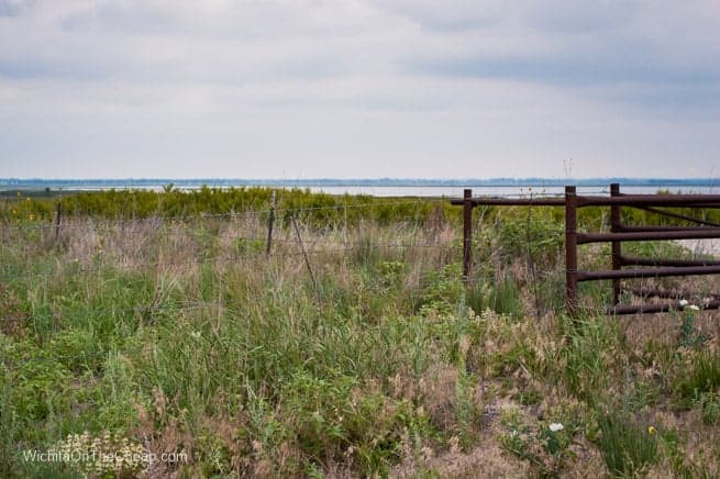 A glimpse of Quivera Wildlife Refuge in the distance