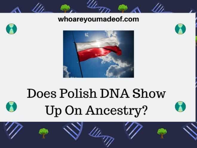 Does Polish DNA Show Up On Ancestry