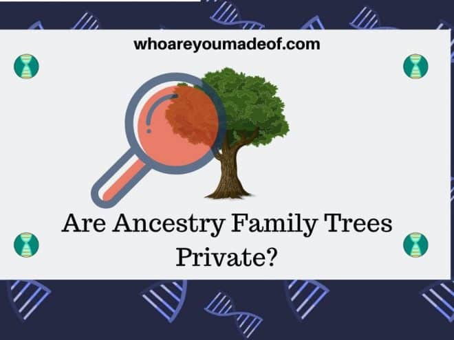 Are Ancestry Family Trees Private