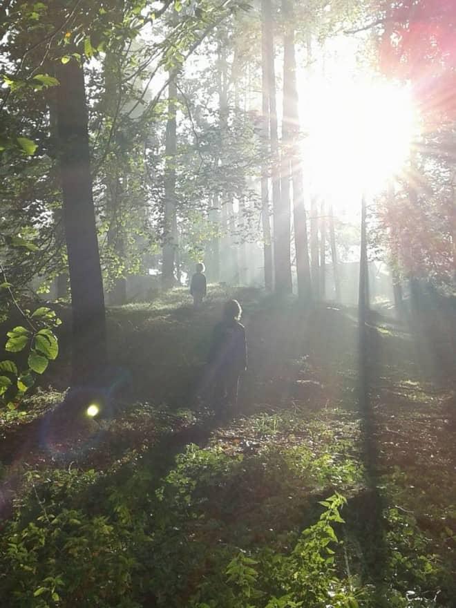 Landgoed t Wildryck te Dieverbrug fotograaf D. Krijnen