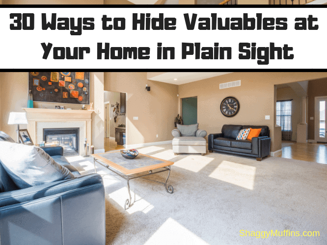 30 Ways to Hide Valuables at your Home in Plain Sight
