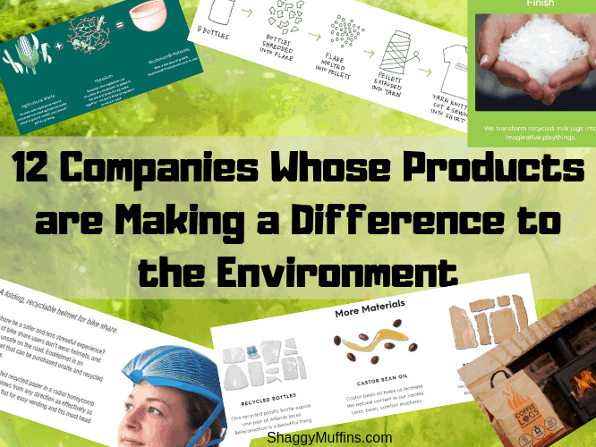 12 Companies Whose Products are Making a Difference to Environment