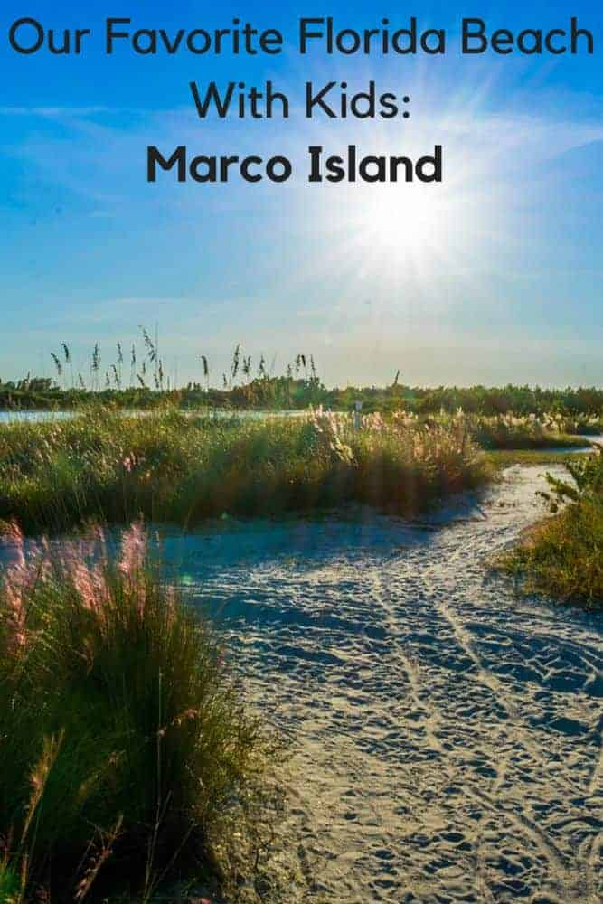 Marco island is the ideal base for a vacation with kids to florida's paradise coast. Here's where to stay, what to do and more. #marcoisland #paradisecoast #florida #thingstodo #kids #winterbreak