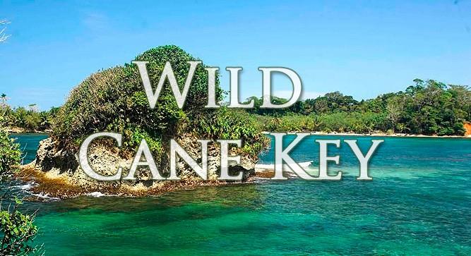 Остров Уайлд Кен Кей (Wild Cane Key)