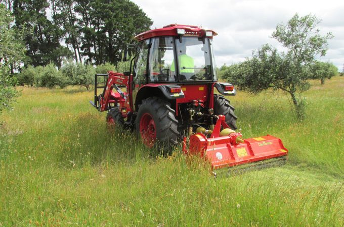 APOLLO 554 Cab with Del Morino Flail Mower