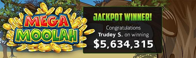 Our player wins $5,634,315 jackpot on Mega Moolah slot!