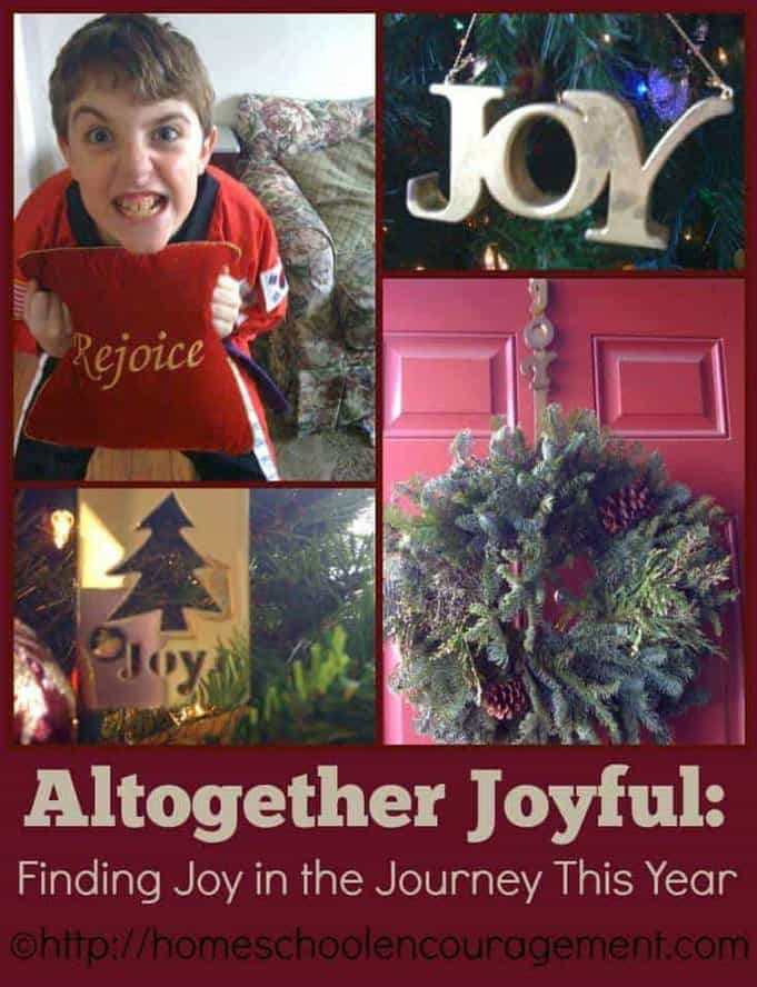 Do you need more joy? The busyness and distractions of the Christmas season can steal our joy. Why not make a commitment this Christmas to find JOY in the journey? It will change your perspective.