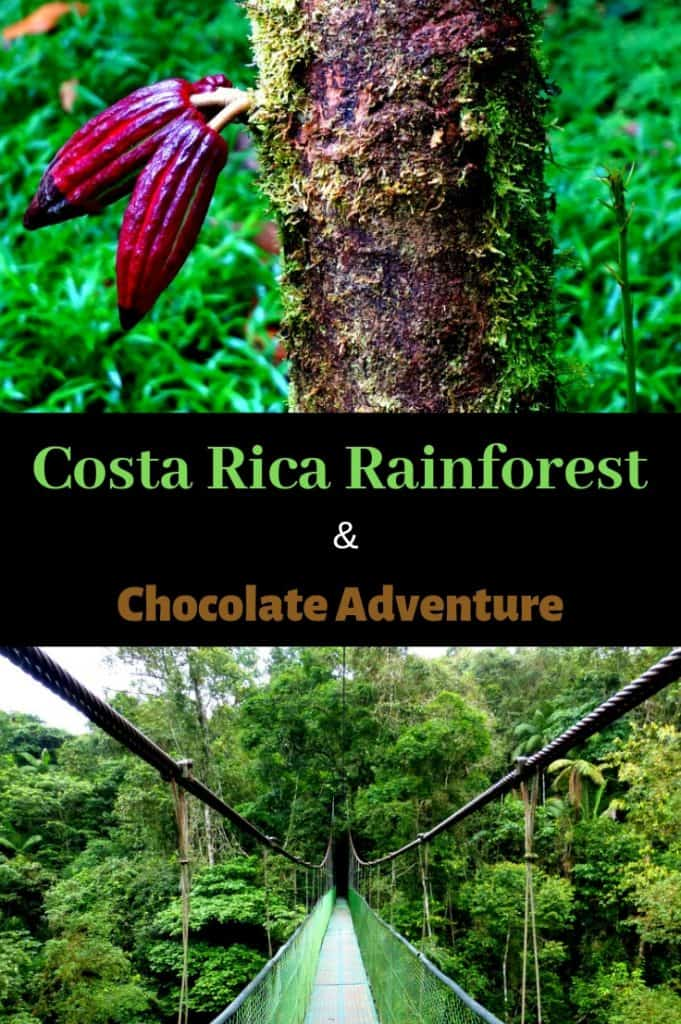 Costa Rica Rainforest and Chocolate