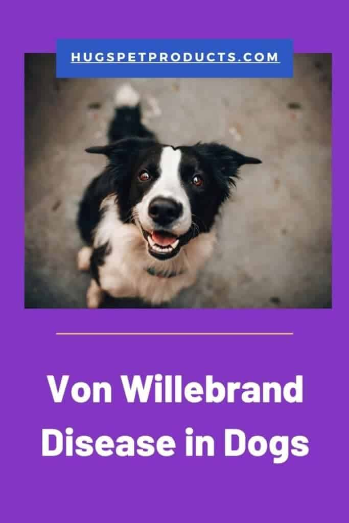 Some breeds are more susceptible to von willebrand disease