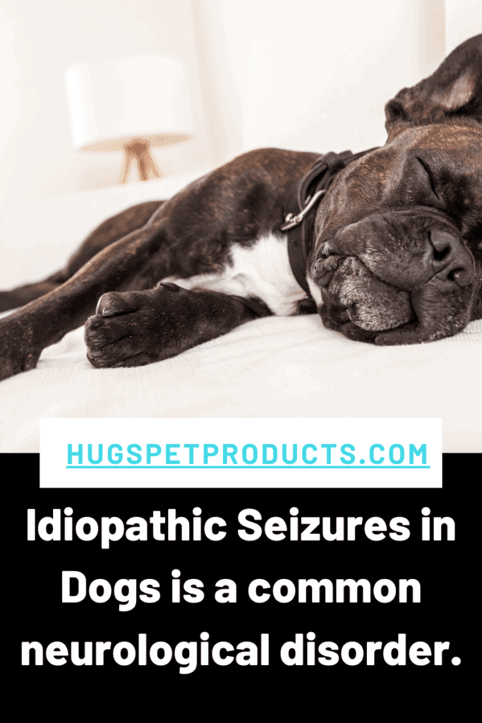 Idiopathic Seizures can happen to any dog.