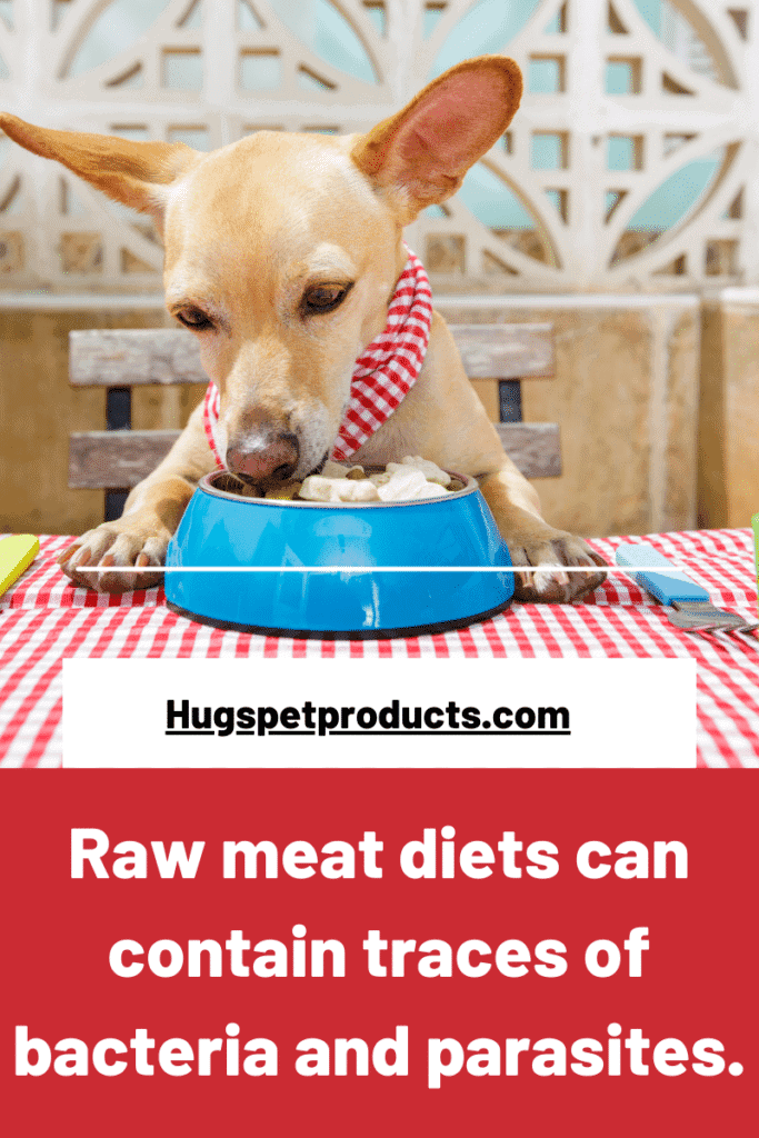 Raw meat diets can contain bacteria and parasites