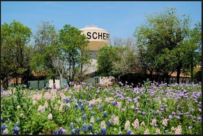 Schertz Texas Public Insurance Adjusters