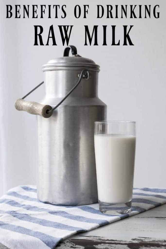 Learn all about the benefits of drinking raw milk as well as what is wrong with how conventional milk is made! #rawmilk #milk #dairy #health #naturalhealth