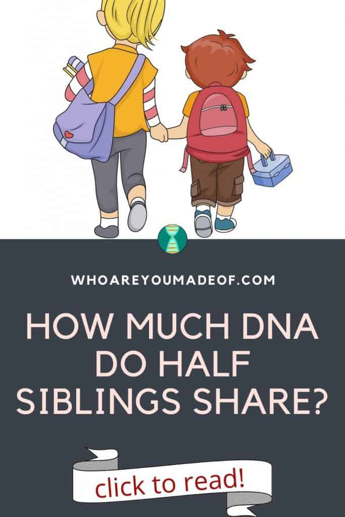 How much DNa do half siblings share Pinterest image with graphic of two siblings walking to school holding hands