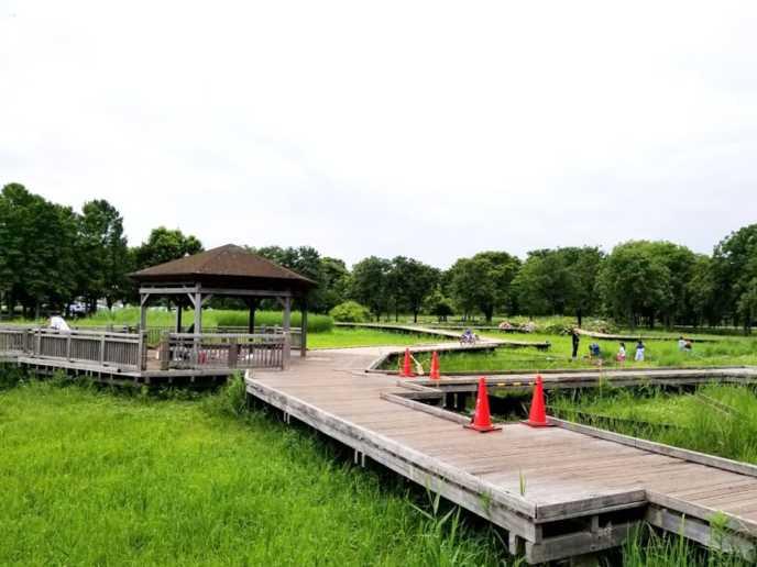 舎人公園は、足立区にある総合公園