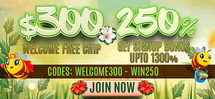 250% welcome bonus and $300 free chips