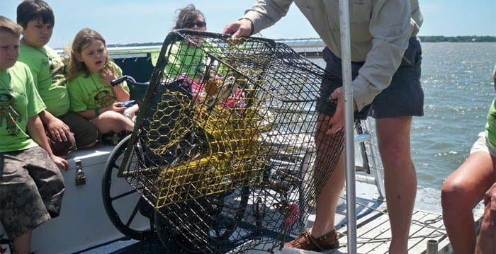 Instructor showing crab cage for kids to look at. Party boat fishing Charleston, SC