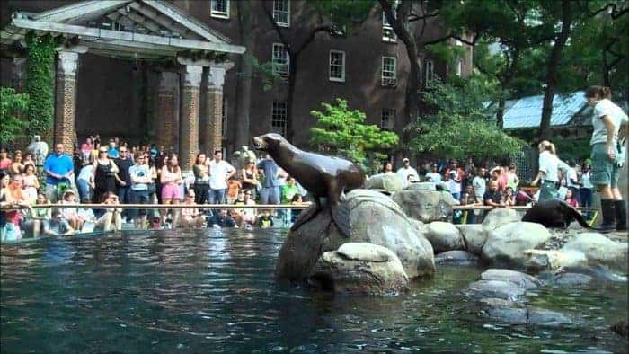 Family memberships can save you money at zoos and other cultural attractions.