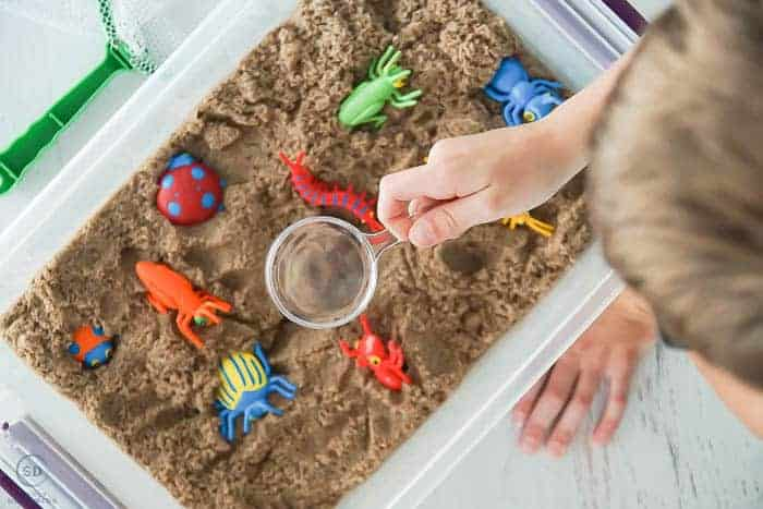 using bug catcher tools in sensory activities