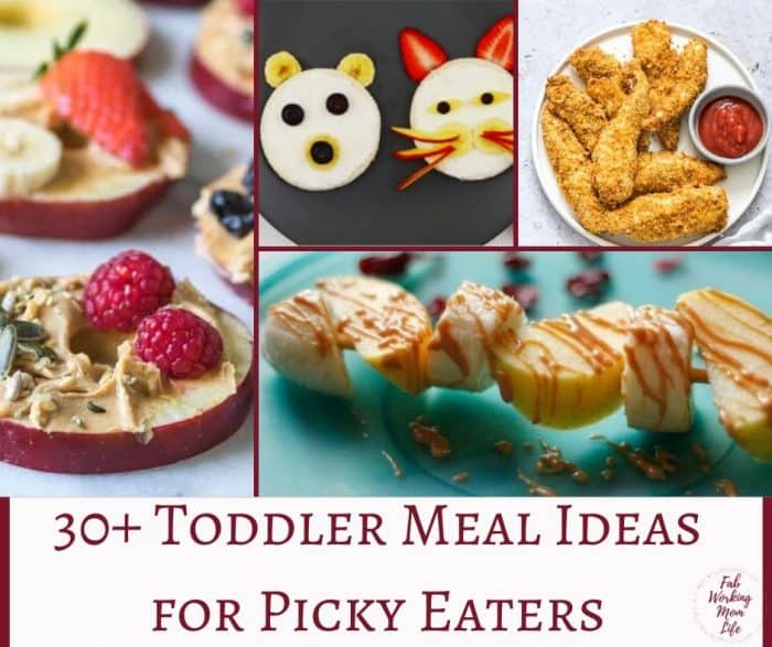 30+ Toddler Meal Ideas for Picky Eaters