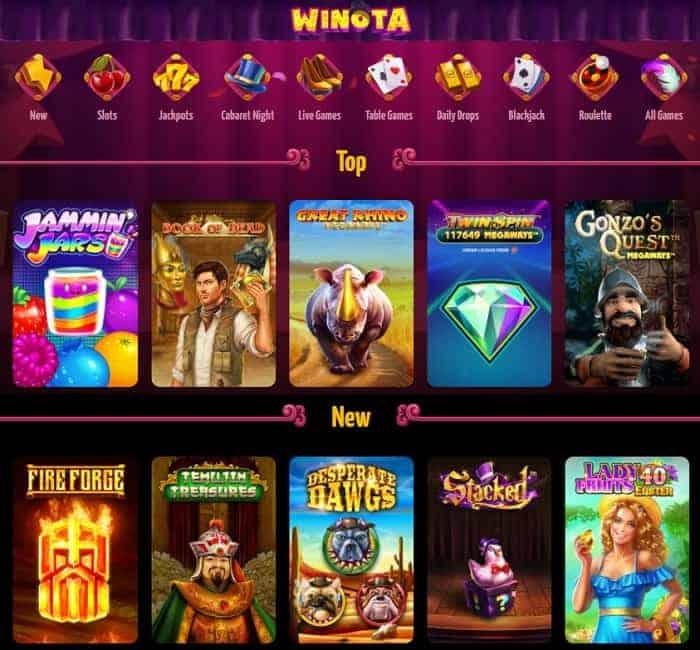 Full Review of Winota Website