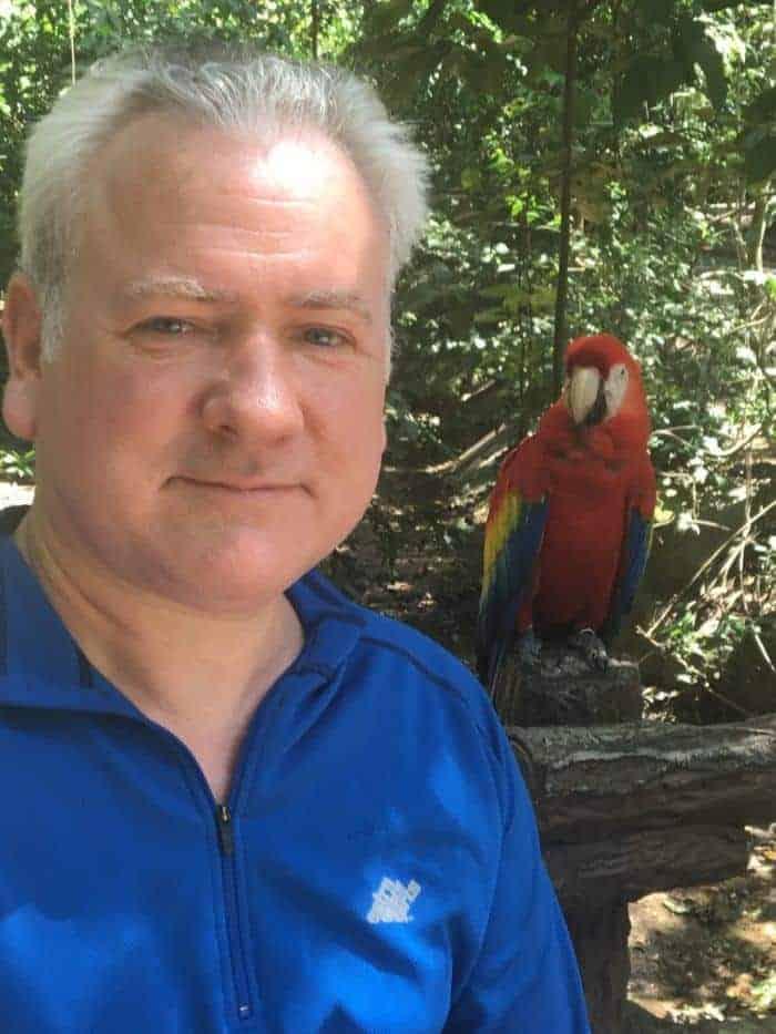 Parrots at gumbalimba park