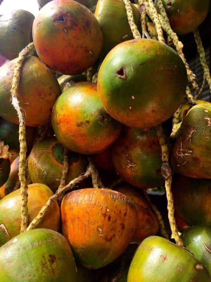Costa rican fruit