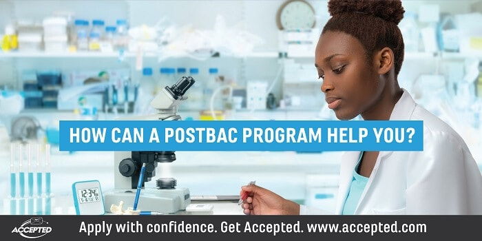 How can a postbac program help you?