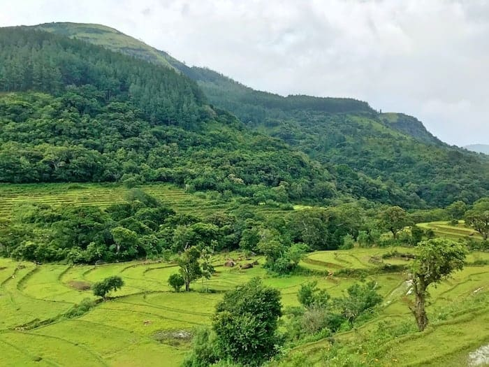 Hike the Knuckles Mountain Range on your Sri Lanka Safari