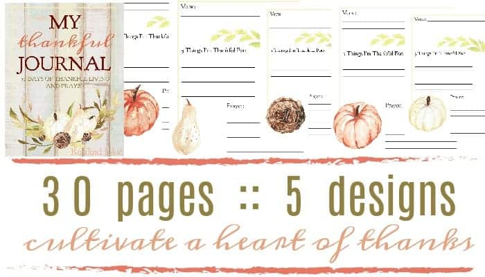 Join the thankful challenge today with this 30-day Thankfulness journal that helps you to journal your thoughts of gratitude and thanks.